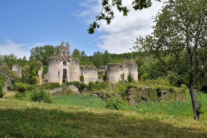 Ruines du château de Vaujours